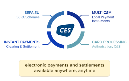 Services for the BFSI industry-CES